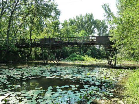 lokalita Sereďská poronda, starý železný most, lužný les so starým ramenom pri rieke Váh, By SanoAK: Alexander Kürthy [CC BY-SA 4.0 (https://creativecommons.org/licenses/by-sa/4.0)], from Wikimedia Commons