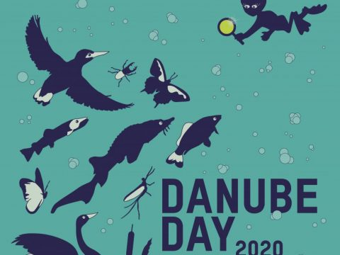 Danube Day 2020 poster
